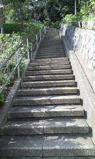 今度は心臓破りの階段!