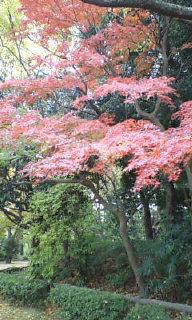 うちの近くの小京都!