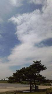 昨日は久々の夏っぷり!