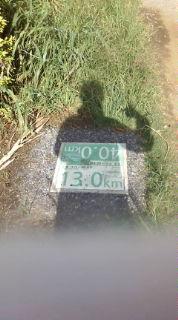 マラソンコース完成!