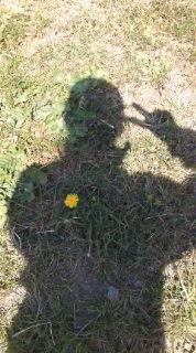 心に春(*^.^*)