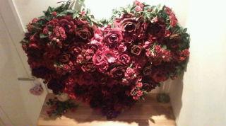 ♪WILD ROSE<br />  ♪