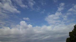 青空見上げて!