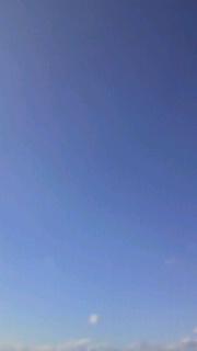 空を見上げてみたよ〜雲ひとつないブルー♪